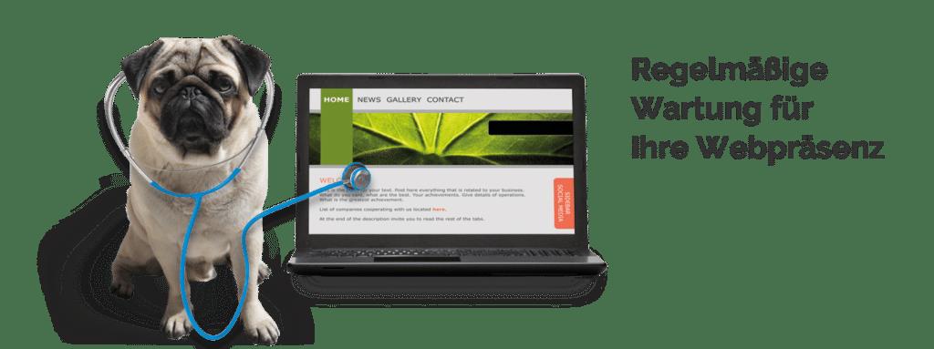 Webpflege / Systemwartung